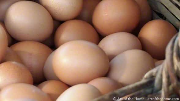 Egg Freshness: fresh egg test