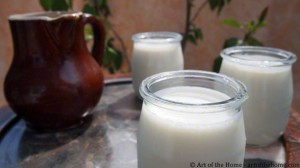 Vanilla Yogurt Recipe with Euro Cuisine Yogurt Maker