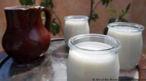 Vanilla Yogurt Recipe with Euro Cuisine Yogurt Maker